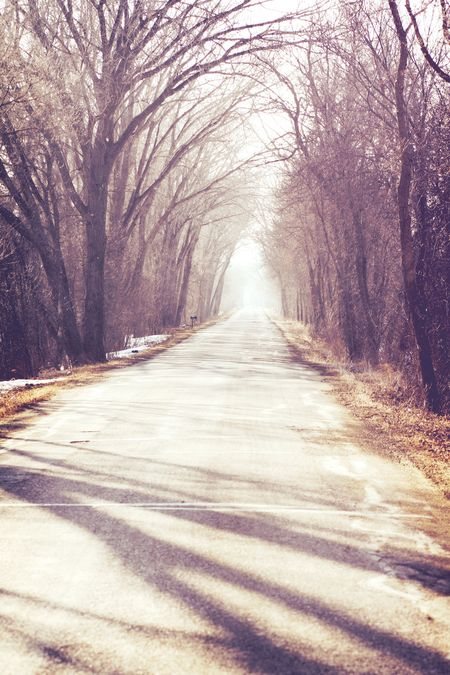 Path_1
